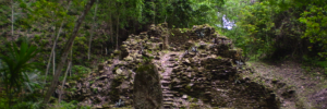 Field Notes From a Maya Ruin